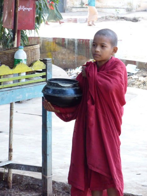 A novice monk drops by