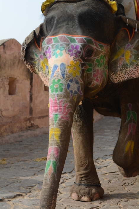 Nothing beats a floral elephant!
